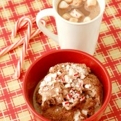 {A Kitchen Addiction} Peppermint Hot Chocolate Ice Cream