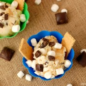 S'mores Ice Cream Recipe