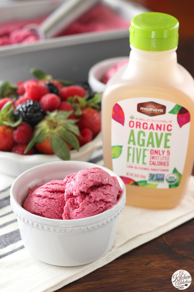 Agave Sweetened Triple Berry Frozen Yogurt l www.a-kitchen-addiction.com