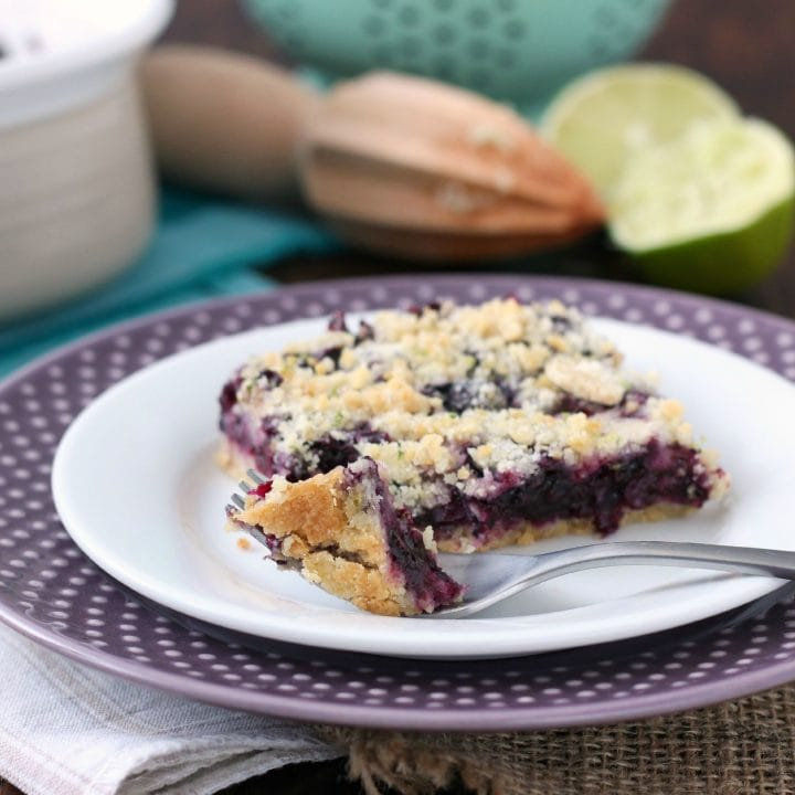 Easy Blueberry Lime Crumb Bars Recipe l www.a-kitchen-addiction.com