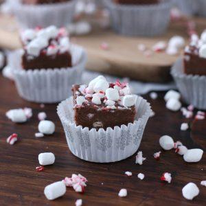Peppermint Hot Chocolate Fudge